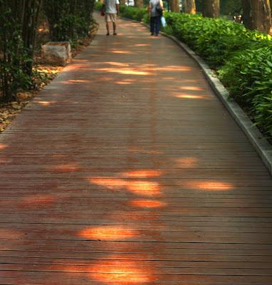 东郊散步 - bldr - Georges blog
