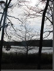 Tyler State Park Dec. '10 002