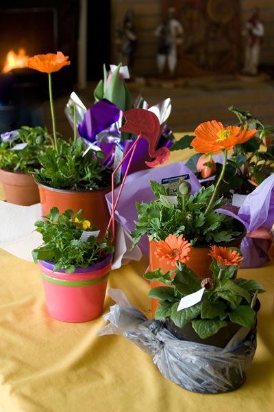 Fellowship-flowers