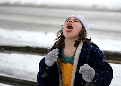 Rose catching snowflakes
