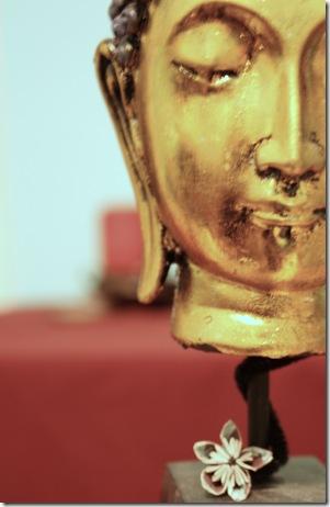 buddha5 color temperature