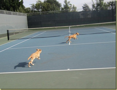 Vienna and Wendy as they took of running in the tennis court together.