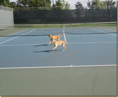 Vienna and Wendy running like crazy in the tennis courts.