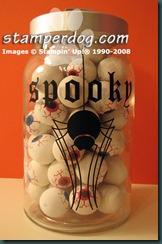 SpookySpider-KLN