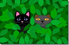 cats in woods