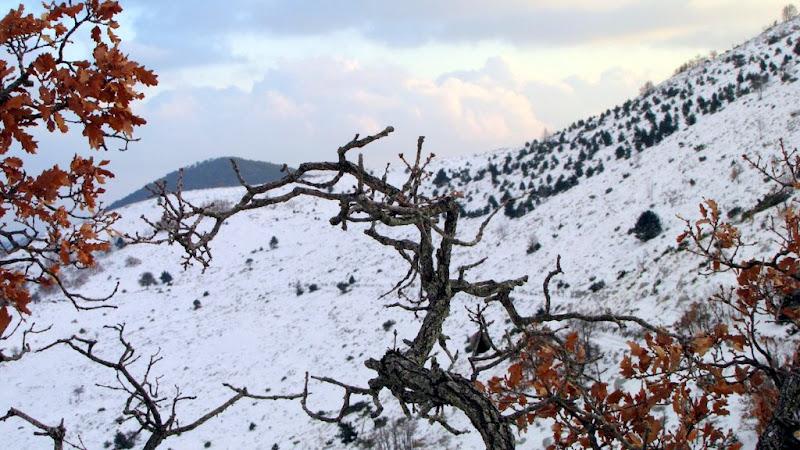 Biokovo pod snijegom, prosinac 2009