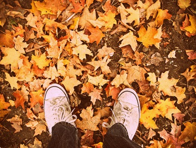 crunching-leaves