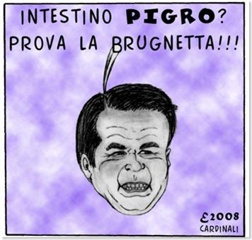 Brunetta3