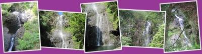 View Maui Waterfalls