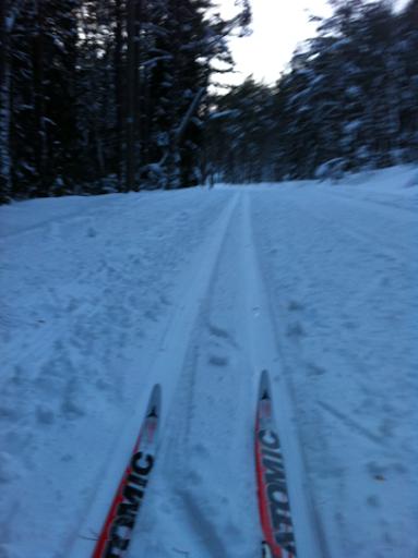 Skidor i Lida