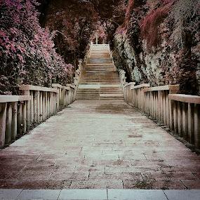 Split stairs by Marko Dragović - City,  Street & Park  City Parks ( stairs, park, pink, split, marjan )