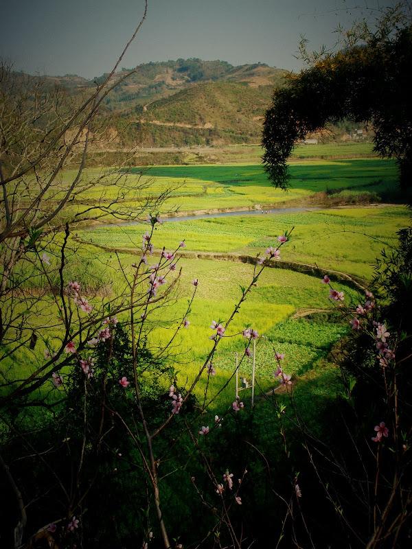 09春天的记忆——人往低处走 - 银月 - 银月的博客