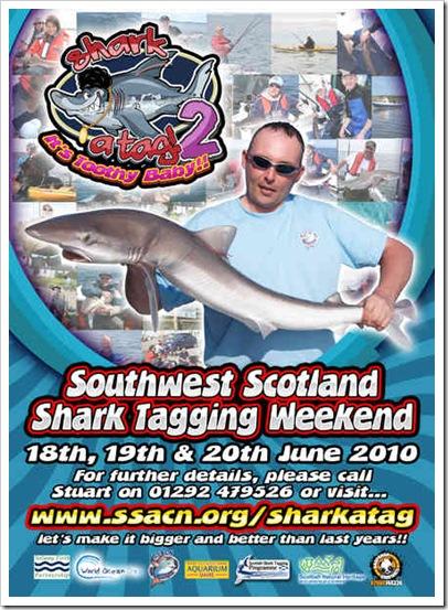 Shark-A-Tag-A5-2010
