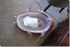 Baby Linnea 053