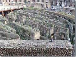 Roma (653)