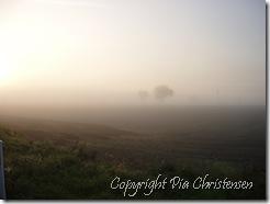 Tåge i Sundby