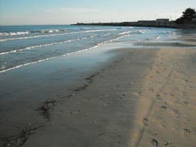 Image of Bassa marea