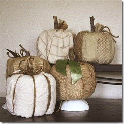neutral toilet paper pumpkins