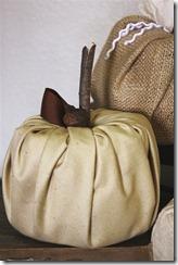 diy tp pumpkin