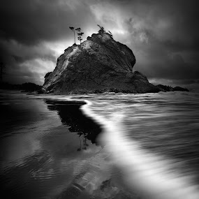 Stormy Morning by Dustin Penman - Black & White Landscapes