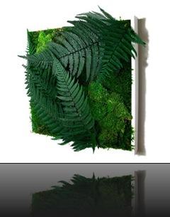 tableau_vegetal_30_1