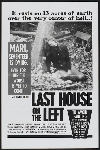 http://lh6.ggpht.com/_IGcPoXkEPio/STY-SY2GKqI/AAAAAAAAfbY/P8C0OLDFXP0/last_house_on_the_left_poster_01.jpg