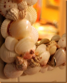 shells 007