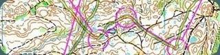 карта соревнований личный чемпионат Украины, средняя дистанция