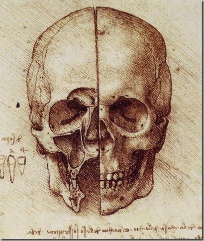Leonardo Da Vinci Dibujos (4)