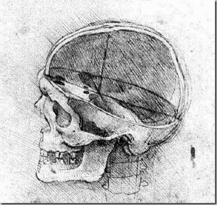 Leonardo Da Vinci Dibujos (3)