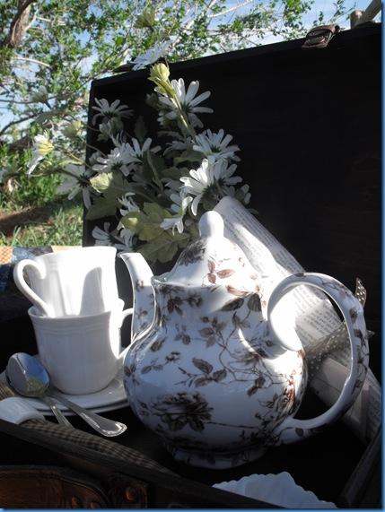 teapot outside 032