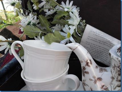 teapot outside 065