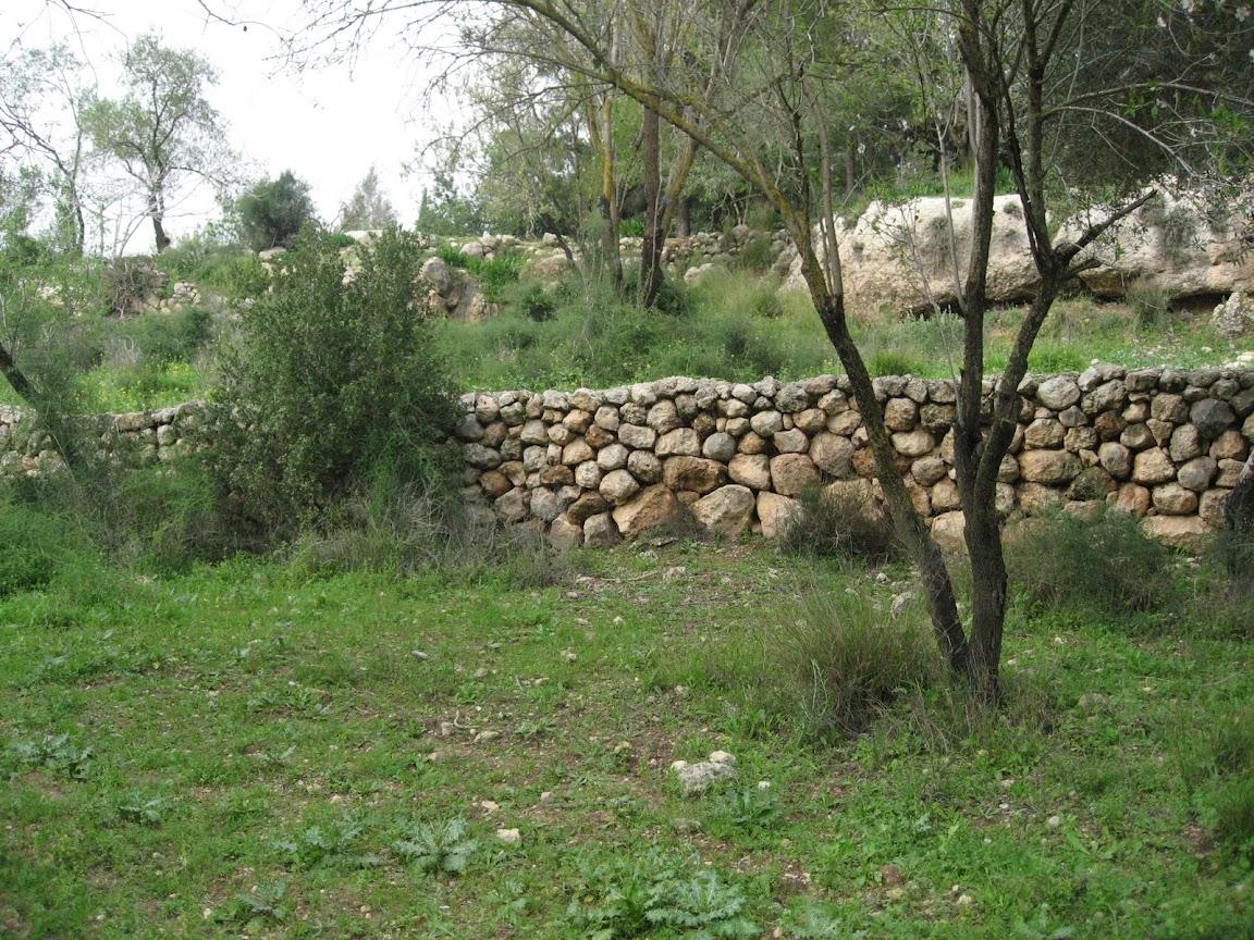 Чемпионат Израиля и прочие соревнования - Страница 3 IMG_3641