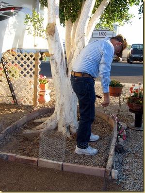 2010-01-07 - AZ, Yuma - Cactus Gardens - Building Flower Garden