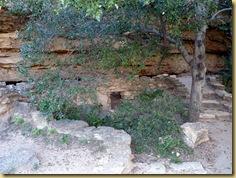 2010-09-24 - AZ, Montezuma's Well -  1020