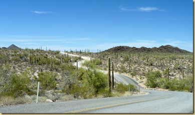 2011-04-21 -3- AZ, Organ Pipe Cactus National Monument (28)