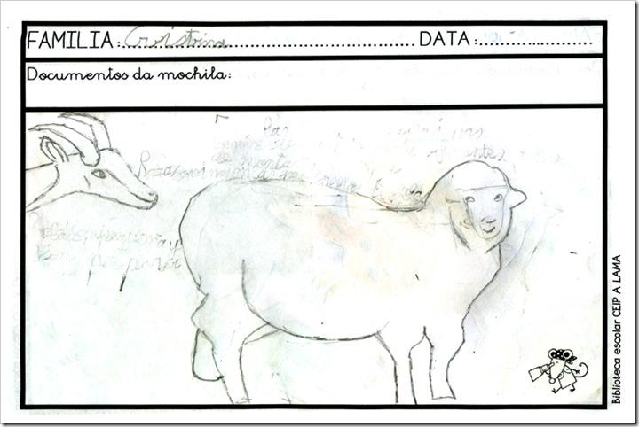 IGLESIAS BARREIRO (CRISTINA)