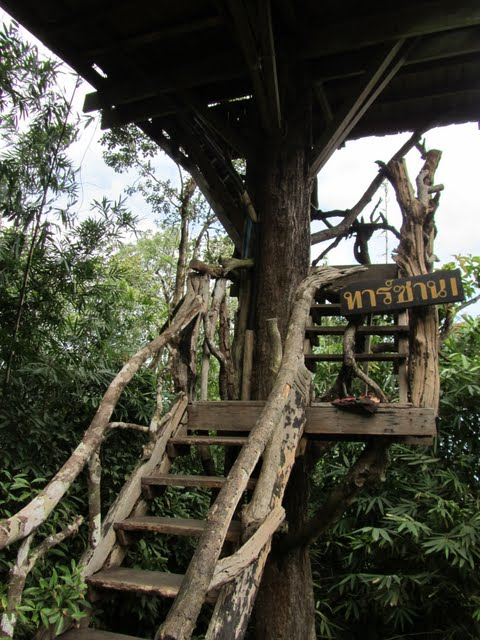 Thong Pha Phum tree houses