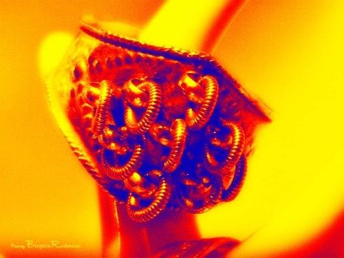ring_20110121_same