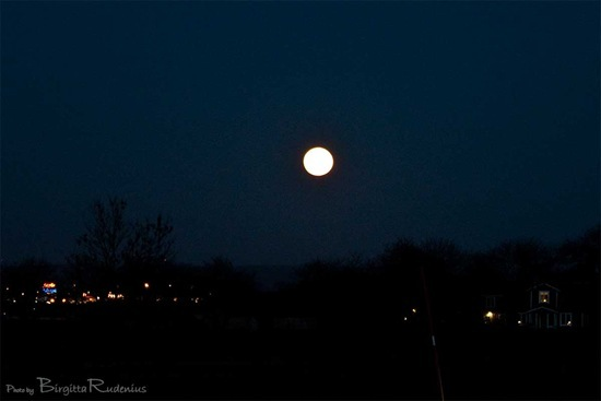 sky_20110319_moon