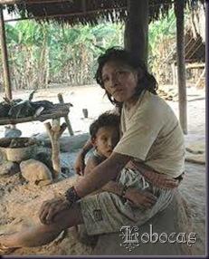 LoboCas_imdigenas14