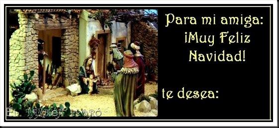 ElTambien_amiga001