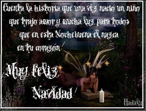 HADALU_navinegra004