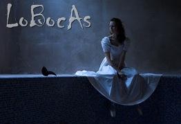 LoBocAs-2011.3