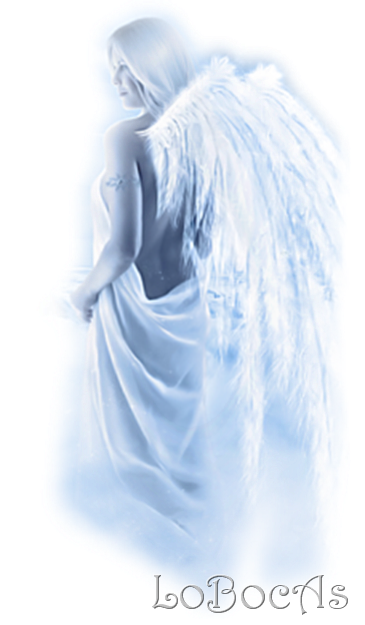LoBocAs-angel008