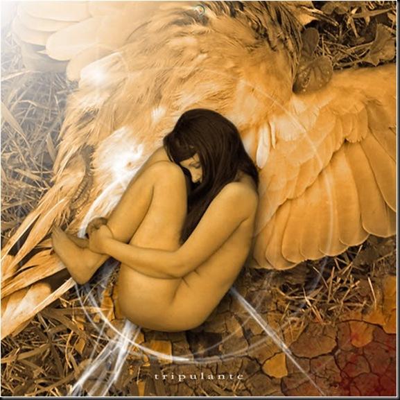 LoBocAs-angel0012