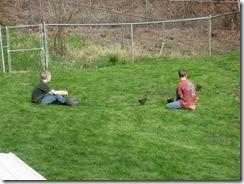chicken coop day one 16