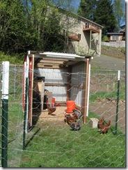 hen house 16