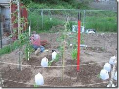 garden in 02