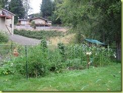 Big garden 01